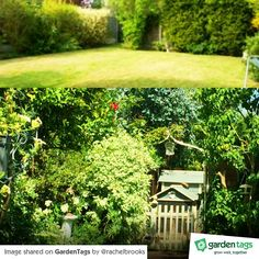 Looking for makeover inspiration? We think Rachel's photos are brilliant! Garden Makeover, Amazing Transformations, Outdoor Structures, Instagram Posts, Photos, Inspiration, Biblical Inspiration, Pictures, Inspirational