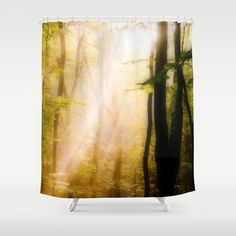 Soft light in the forest Shower Curtain by Pirmin Nohr - $68.00 Sunrays on a hazy morning in the autumnally forest  Nature, autumn, fall, trees, light, silhouettes, sunbeams, sun, woodland