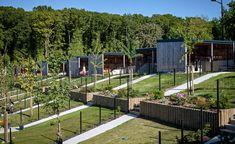 atelier-architecture-philippe-14-maison-locatives-_-qe-et-passif-_-quartier-henri-dunant-le-havre-76-1429.jpg