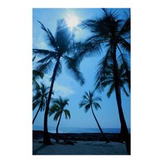 Customizable #Artistic #Bedrooms #Blues #Canvases #Contemporary #Cool #Designs #Hawaii #Hawaiian #Hawaiian#Photography #Homes #Hotels #Interior#D233Cor #Interior#D233Cor#Items #Modern #Nature#Photography #Oceans #Original #Palm#Trees #Photography #Photos #Pictures #Restaurants #Skies #Stores #Stylish #Sunlight #Tasteful #Tropical #Tropical#Photography #Tropics #Turquoises #Unique #Waterfalls Palm Trees and Blue Skies Poster available WorldWide on http://bit.ly/2gvKs3I