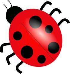ladybird cartoon - Google Search