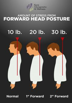 "Amount of #stress from #ForwardHeadPosture ‍♀  Normal: 10 lb.  1"" Forward: 20 lb. 2"" Forward: 30 lb.  #posture"