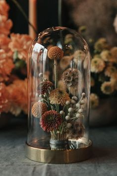 Flower shop interiors - Everything You Need to Know About How to Dry Flowers Deco Floral, Arte Floral, Dried Flower Arrangements, Dried Flowers, How To Dry Flowers, Fall Flowers, Cut Flowers, Purple Flowers, White Flowers
