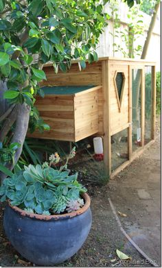 I like the external nest box. I would like to make the roosting section like this, and have a composting bin directly under it to catch the droppings and hold the henhouse cleanings.