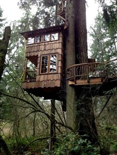 37 Luxury Tree Houses You'd Like to Move Into Backyard Treehouse, Treehouse Living, Luxury Tree Houses, Cool Tree Houses, Enchanted Tree, Tree House Designs, Amazing Buildings, Cabin Design, Small House Plans