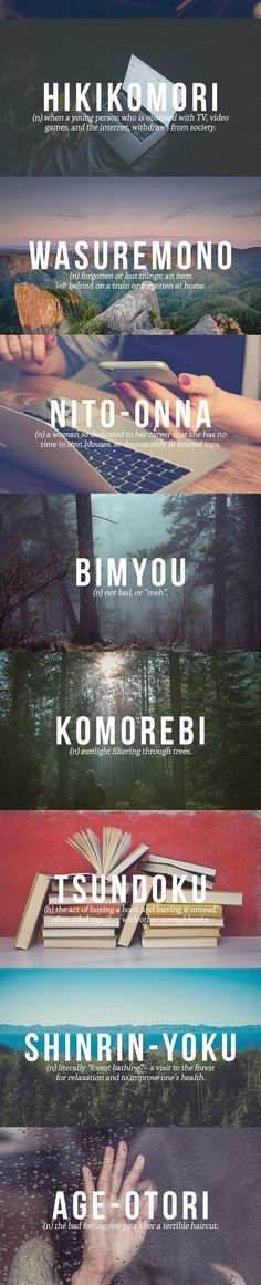 The Japanese Words You Need In Your Life http://ibeebz.com