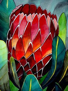Shop Protea flower watercolour original art painting poster created by SachaGrosselArt. Fabric Painting, Watercolour Painting, Watercolor Flowers, Watercolor Pencils, Painting Patterns, Watercolours, Protea Art, Protea Flower, Arte Floral