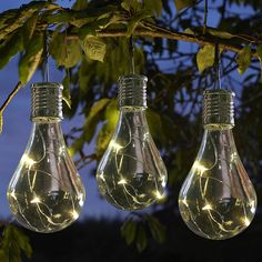 Solar Edison Style Light — The Worm that Turned - REVITALISING YOUR OUTDOOR SPACE