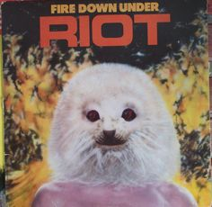 Riot, Fire Down Under, Vintage Record Album, Vinyl LP, American Heavy Metal Band, Hard Rock Music, Rock Ballads, Hair Band by VintageCoolRecords on Etsy