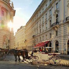 Michaelerplatz Vienna 🌟☀️🌟 I always enjoy the  hot summer days with the golden sunset light in Vienna's imperial city center 🌟 Happy Sunday 🌟