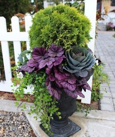 Fall Planters Ideas for Your Outdoor Greenery 30 Lovely Fall Planters Ideas for Your Outdoor Lovely Fall Planters Ideas for Your Outdoor Greenery We are going. Fall Planters, Outdoor Planters, Garden Planters, Outdoor Gardens, Container Plants, Container Gardening, Container Flowers, Flowering Kale, Flower Tower