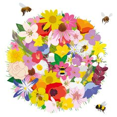The Beeworld Project is about educating people on the importance of bees and teaching them how to grow plants and create habitats that will ensure their survival.  www.ibra.org.uk