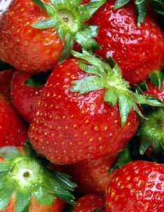 The key to growing organic strawberries is to prepare the soil and prune them correctly. http://www.gardenguides.com/80953-grow-organic-strawberry-plants.html #food #gardening