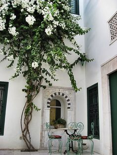 Tunis Courtyard with White Bougainvillea | Flickr - Photo Sharing!