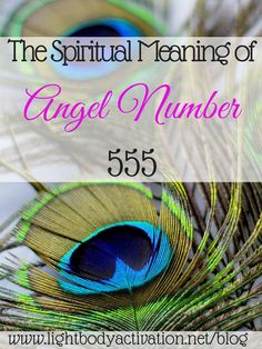 Numerology love compatibility 6 and 4 image 2