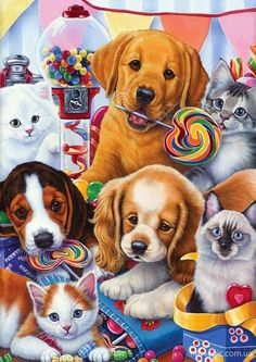 Sweet Ones (Puppies and Kittens) by Jenny Newland
