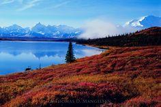 Shores of Wonder Lake - $795.00