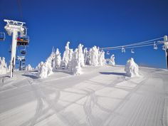 Whitefish, MT - Going to Whitefish with the Indianapolis Ski Club in 2013. SO EXCITED!