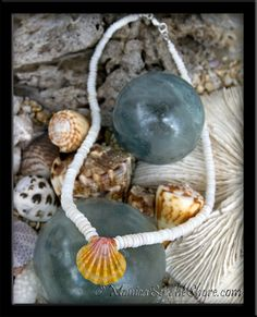 Puka Shells & Sunrise Shell from Hawaii  I used to make Puka shell and paper shell necklaces