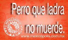 Perro que ladra no muerde. #Dichos #Refranes #DichosyRefranes #Mexicopolis