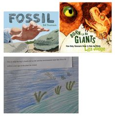 To address NGSS PE 3-LS4-1, students can develop a visual model that shows what the boy's fossils in FOSSIL tell us life and the environment were like 30 to 50 million years ago in the place he visited.