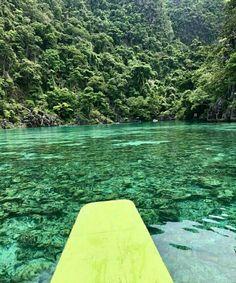 Twin Lagoon Coron,Palawan Coron Palawan, Surfboard, Wander, Twin, Adventure, Nature, Travel, Naturaleza, Viajes