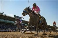 New Year's Day(2011)Street Cry- Just Whistle Dixie By Dixie Union. 3x5 To Mr. Prospector, 5x5 To Hail To Reason And Natalma. 3 Starts 2 Wins 1 Third. Won BC Juvenile(G1). Retired 2 Months After BC Win After Fracturing Sesamoid Bone While Getting Ready For 3 YO Season.