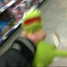 kermit our good old boi Sapo Kermit, Reaction Pictures, Funny Pictures, Sapo Meme, Laughing Funny, Dankest Memes, Funny Memes, Meme Meme, Fandom Memes