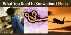 CDC.Gov/What You need to know about Ebola-   healthcare setting precautionary and screening guidelines