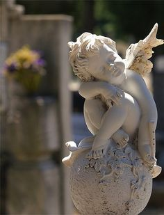 '' Little Angel '' Dragan Todorovic photography Cemetery Angels, I Believe In Angels, Ange Demon, Garden Angels, Angel Statues, Angels And Demons, Angel Art, Garden Statues, Spring