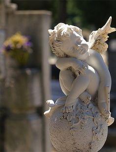 An Angel in my Garden~~