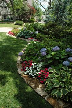Shade garden border, hydrangeas, impatients, hostas