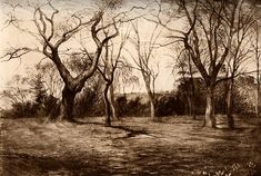 The Field behind Ruskin's House at Denmark Hill, by John Ruskin
