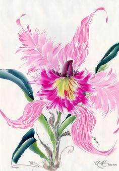 Cattleya: Studies in Pink IV