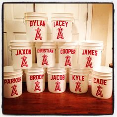 Team buckets. Keep all baseball gear in buckets during games. #diy