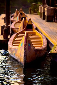 Davy Crocket Explorer Canoes. One of the secret rides that not many people know about!