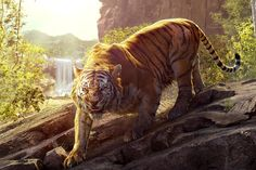 undefined Image Of Tiger Wallpapers (48 Wallpapers) | Adorable Wallpapers