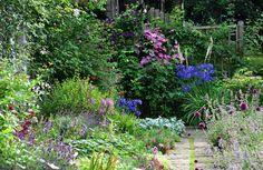 In pictures: Scotland's beautiful gardens - Scotland Now Birken Cottage Aberdeen