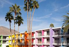 The Saguaro-palm springs!