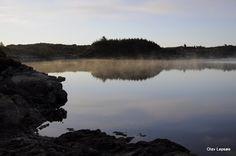BURMAVEIEN KARMØY NORWAY. BY OLAV LEPSØE. fuglerfotoogtreni...