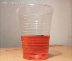 por-que-el-hielo-flota-en-el-agua- Shot Glass, Tableware, Floating In Water, Educational Activities, Ice, Dinnerware, Tablewares, Place Settings, Shot Glasses