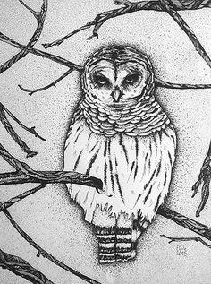 Etoile Ramousse illustration