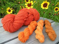 Yarn dyed with dyer's coreopsis