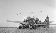 96 best warbirds images on pinterest world war two wwii and airplanes butcher bird and a group of stukas in the air fandeluxe