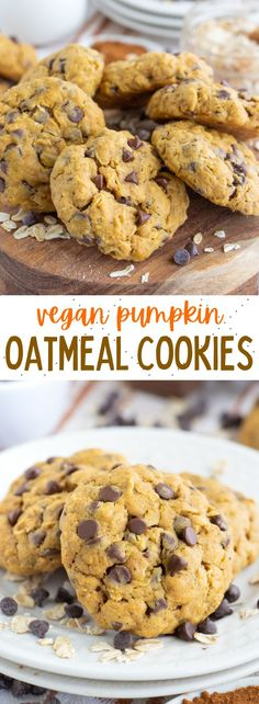 Soft and chewy vegan pumpkin oatmeal cookies with chocolate chips! These easy cookies are so delicious and perfectly spiced. #vegancookies #veganpumpkincookies #veganpumpkindesserts #veganoatmealcookies #veganpumpkinoatmealcookies Vegan Pumpkin Cookies, Pumpkin Oatmeal Cookies, Pumpkin Spice Muffins, Oatmeal Cookie Recipes, Pumpkin Chocolate Chips, Chocolate Chip Oatmeal, Healthy Vegan Desserts, Quick Easy Desserts, Vegan Dessert Recipes