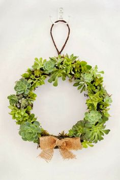 DIY: How To Make a Succulent Wreath — Apartment Therapy Tutorial Christmas Wreaths To Make, Holiday Wreaths, How To Make Wreaths, Christmas Decorations, Christmas Ideas, Succulent Arrangements, Succulents Garden, Hanging Succulents, Succulent Plants