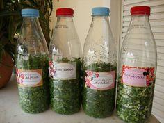 τα μυρωδικά μας σε τάξη Preserving Food, Greek Recipes, Kitchen Hacks, Food Hacks, Allrecipes, Helpful Hints, Mason Jars, Flora, Water Bottle