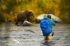 Bears in Alaska by Javier Valladares on 500px