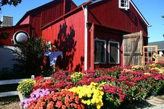 Happy Fall.  We love our local farms like Terhune Orchards.  Happy picking!