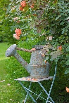 watering can + coral garden (coral roses garden) Water Garden, Lawn And Garden, Garden Tools, Beautiful Gardens, Beautiful Flowers, Coral Garden, Vintage Garden Decor, Plantation, Garden Chairs